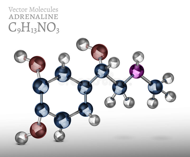 肾上腺素分子图象 库存例证