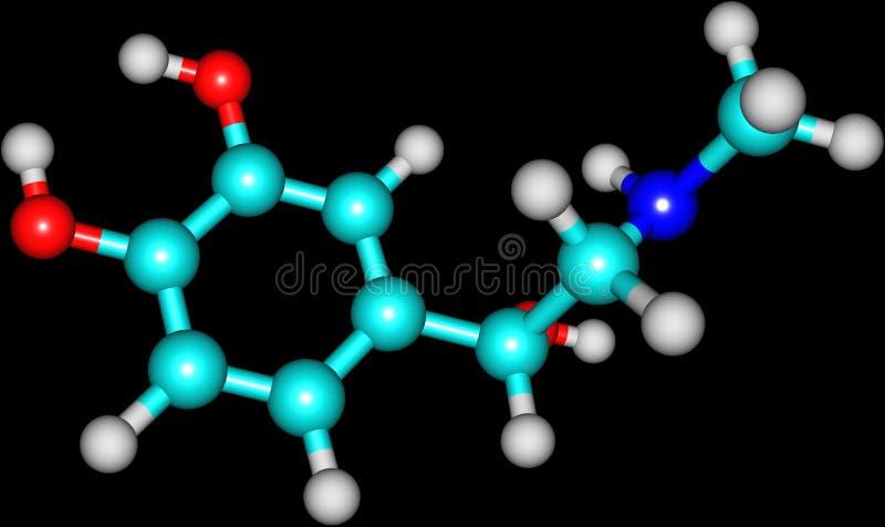 肾上腺素分子 皇族释放例证