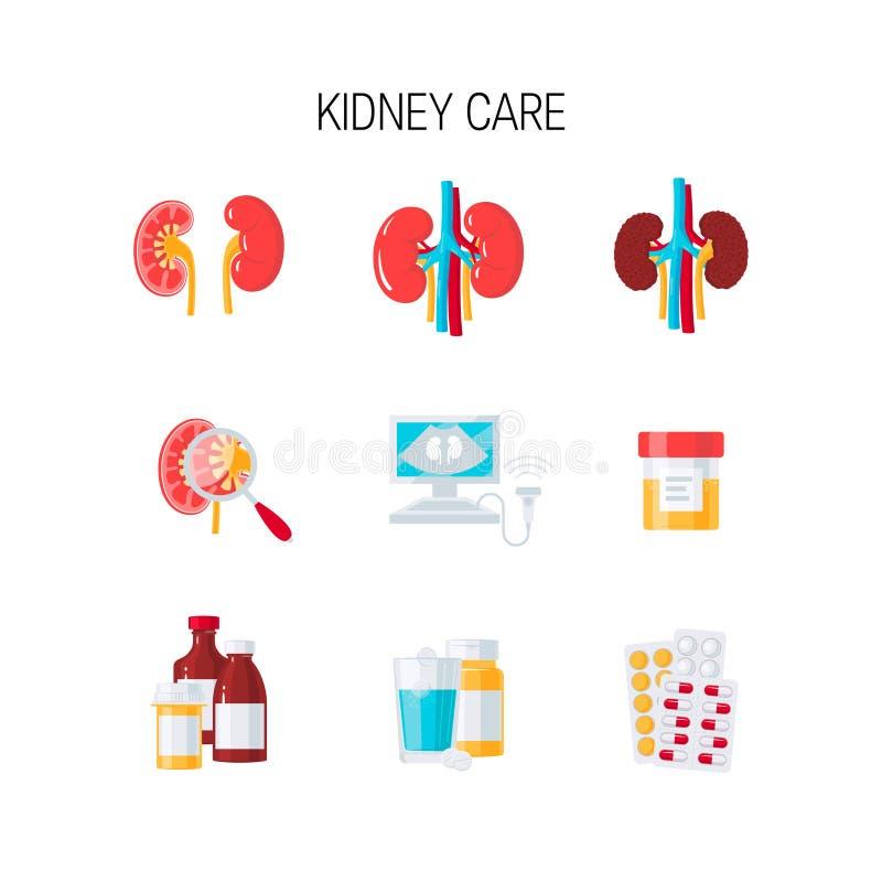 肾脏关心传染媒介集合 向量例证