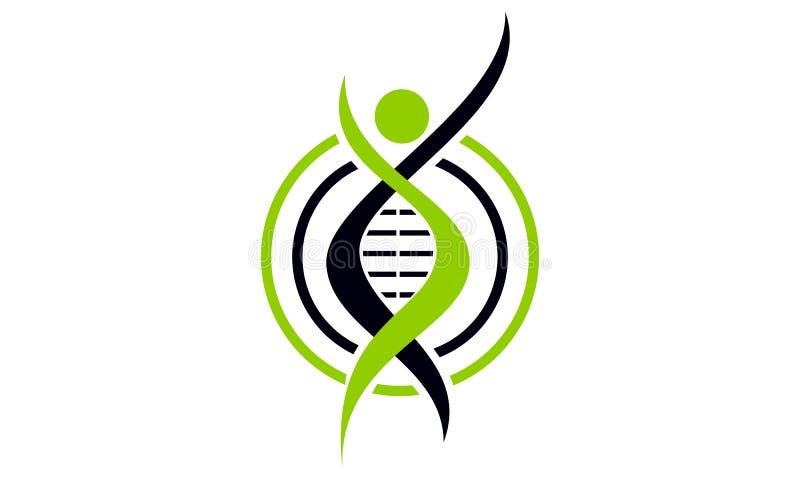 肾脏巨蟹星座健康支持 向量例证