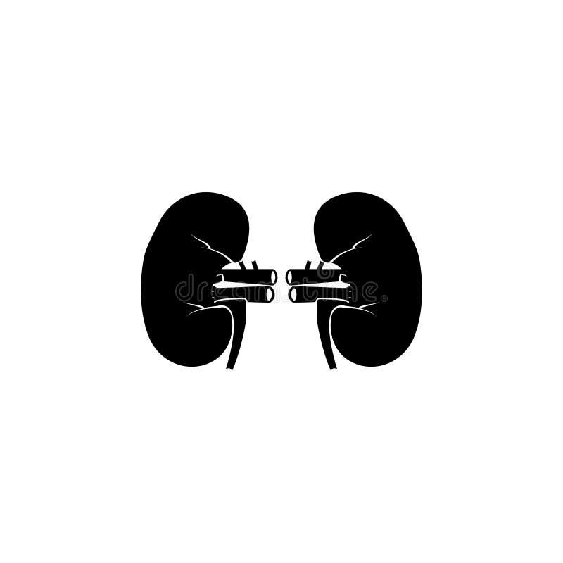 肾脏象 身体局部象的元素 优质质量图形设计象 标志和标志汇集象网站的,网 向量例证