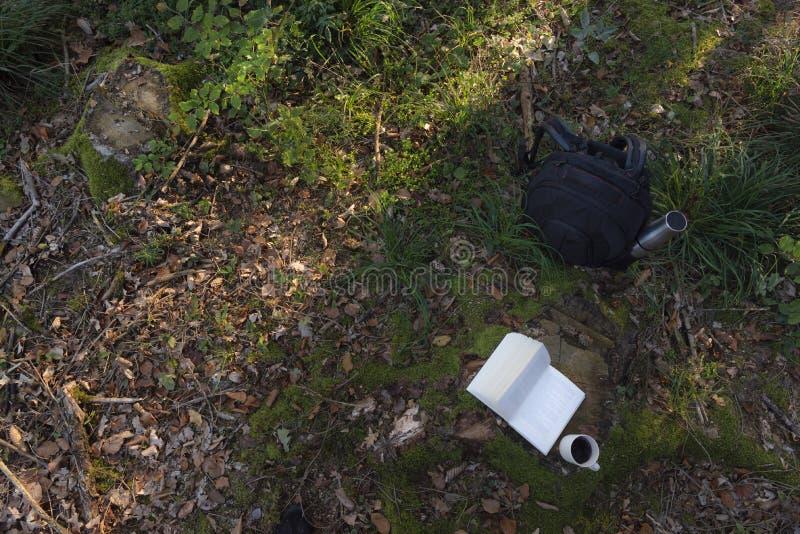 背包和咖啡在秋天森林地板上 免版税库存图片