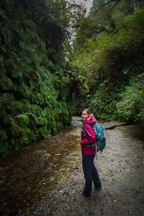 背包徒步旅行者探索的蕨峡谷加利福尼亚 免版税库存照片
