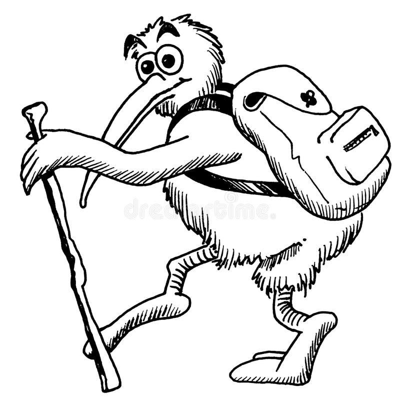 背包徒步旅行者猕猴桃 库存例证