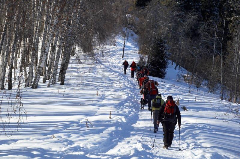 背包徒步旅行者组山冬天 库存照片