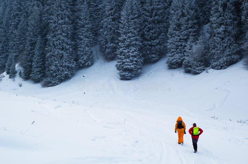 背包徒步旅行者copule森林冬天 库存照片