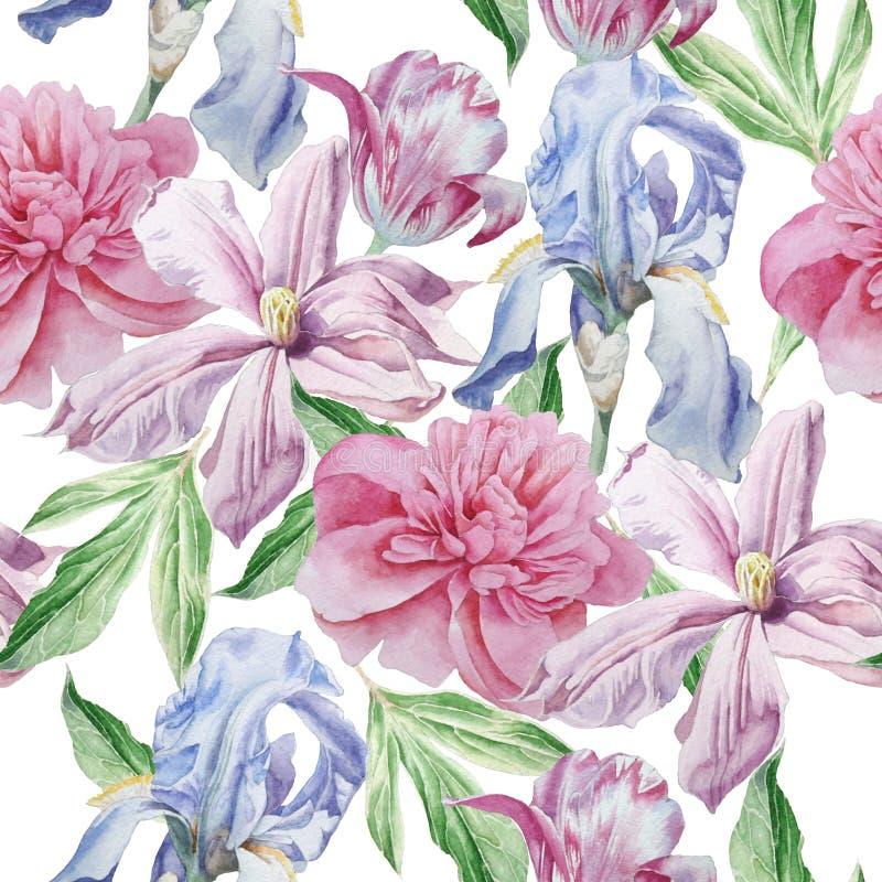 背景不尽的花纹花样无缝的春天瓦片 牡丹 铁线莲属 郁金香 虹膜 水彩 库存例证