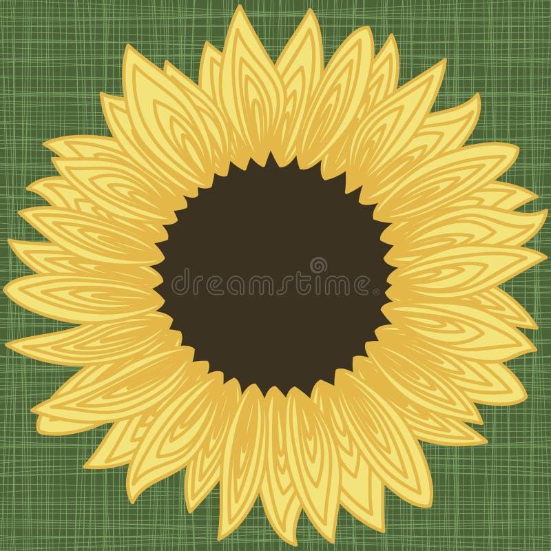 背景与向日葵瓣等高的边界框架 向量例证