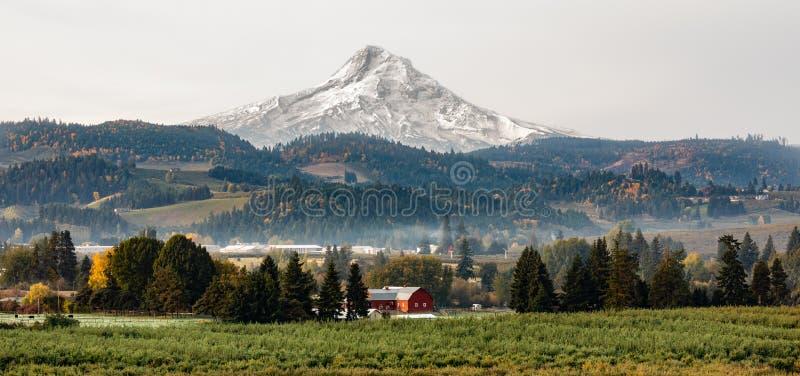 背景中胡德山的红色谷仓和果园 免版税库存照片