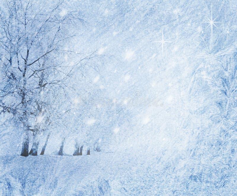 Download 背景冬天 库存图片. 图片 包括有 雪花, 结构树, 艺术, 圣诞节, 模式, 蓝色, 公园, 冬天, 抽象 - 22354807