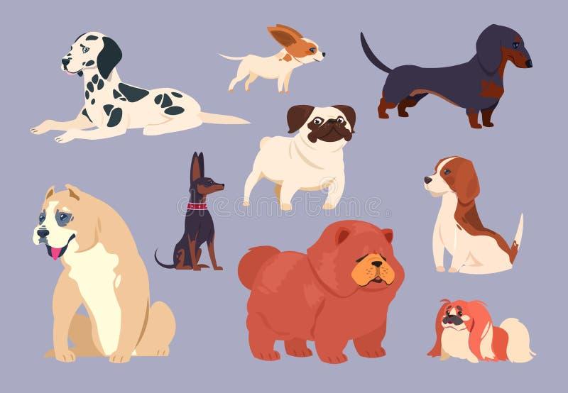 背景动画片设计尾随例证 小狗宠物不同的品种 中国咸菜、达克斯猎犬和达尔马提亚狗,美洲叭喇和pekingese,哈巴狗和小猎犬 皇族释放例证