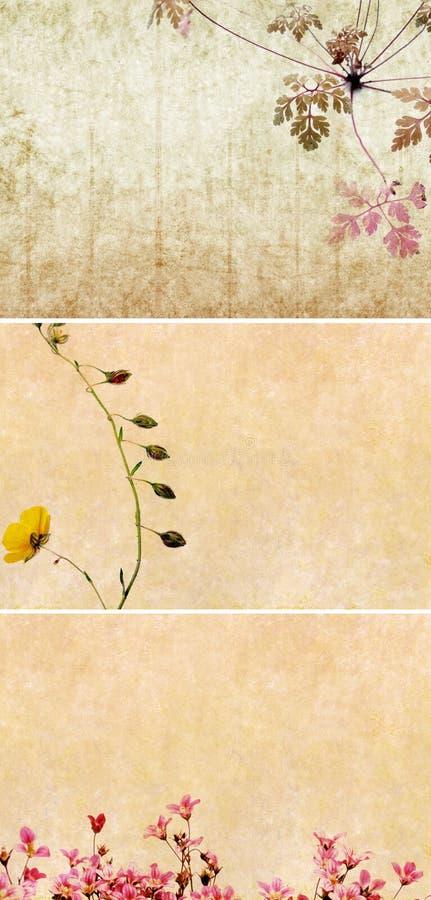 背景可爱的纹理三 免版税库存图片