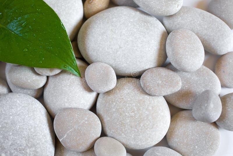 背景向禅宗扔石头 免版税库存照片