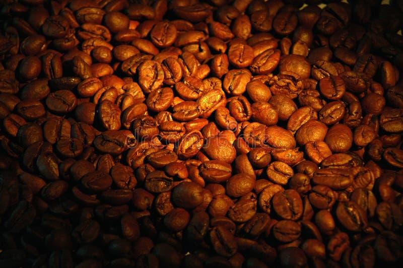 背景咖啡 库存图片
