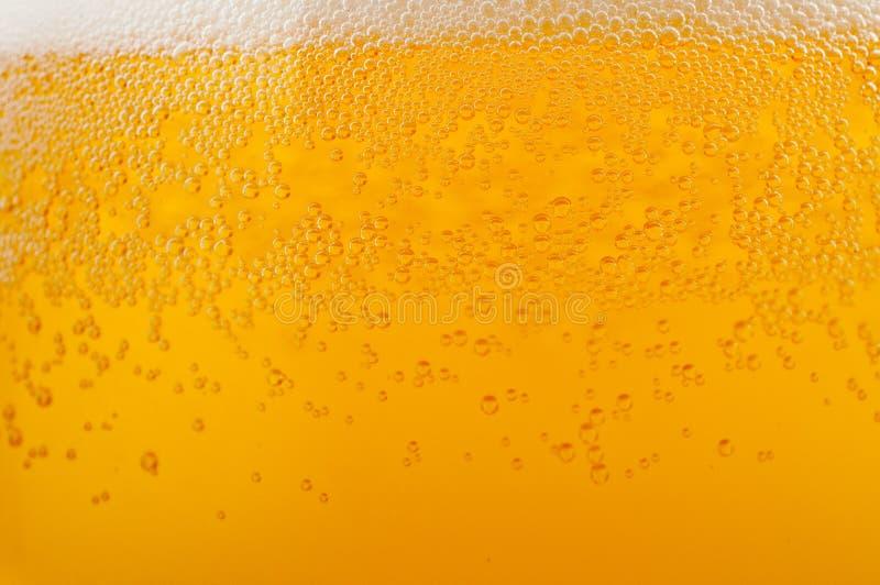 背景啤酒光 免版税库存图片