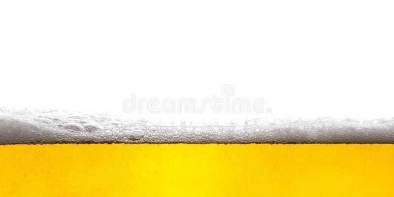 背景啤酒包含梯度滤网 免版税库存照片