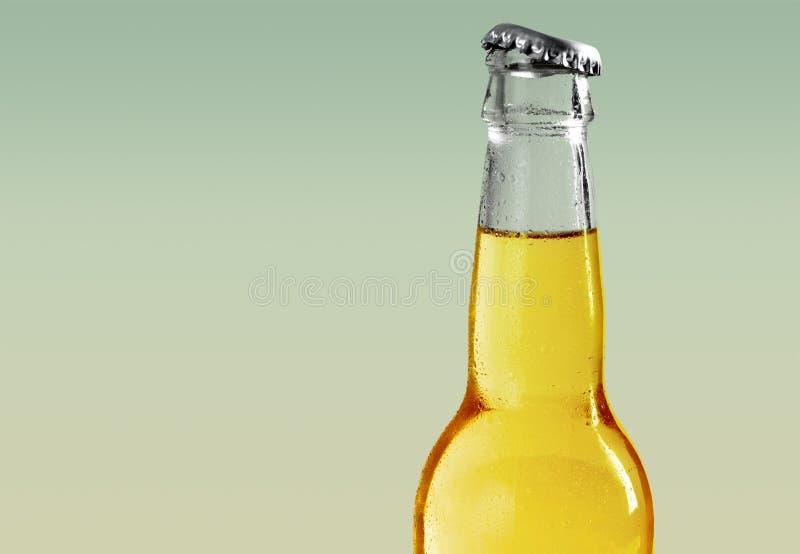 背景啤酒瓶例证桔子向量 库存照片