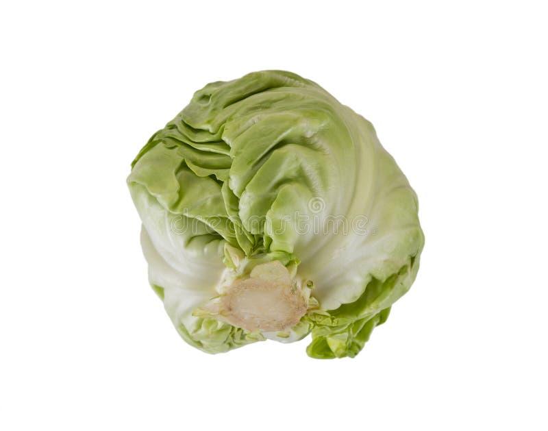 背景圆白菜绿色查出的白色 健康的食物 在白色查出的圆白菜 圆白菜接近 免版税图库摄影
