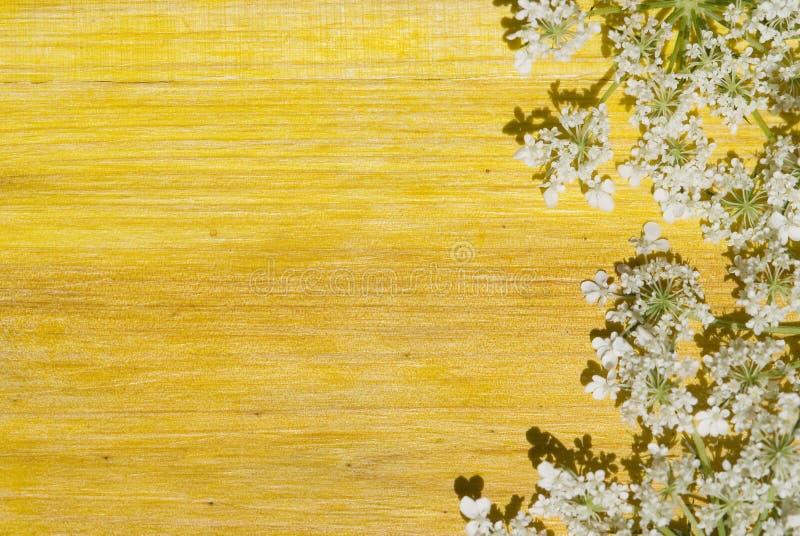 背景在空间木头的复制花 免版税库存照片