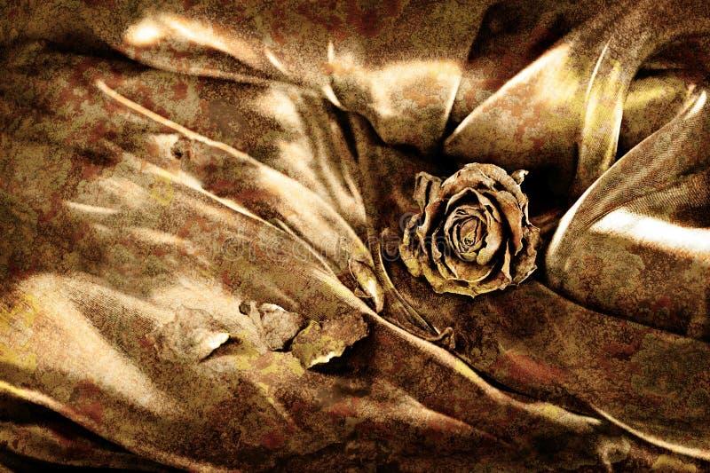 背景干燥玫瑰色缎葡萄酒 金子色的图象,将 库存照片
