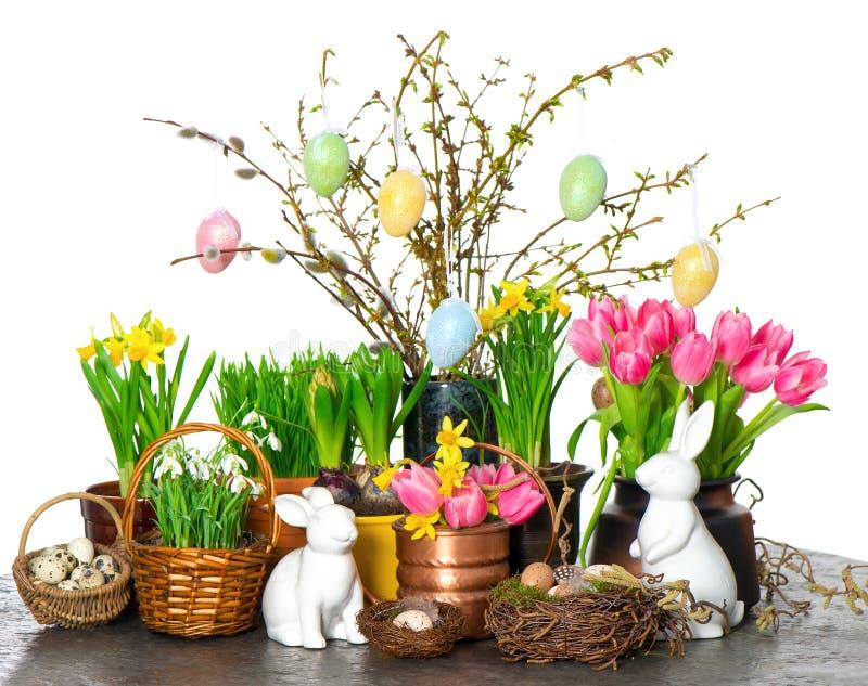 背景开花兔宝宝装饰复活节彩蛋花水仙snowdrops空白春天的郁金香 图库摄影