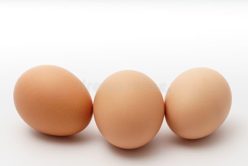 背景怂恿食物图象三白色 库存照片