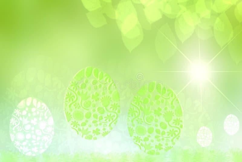 背景愉快的复活节 与抽象太阳的摘要精美浅绿色的春天夏天背景纹理与光芒和五颜六色 皇族释放例证