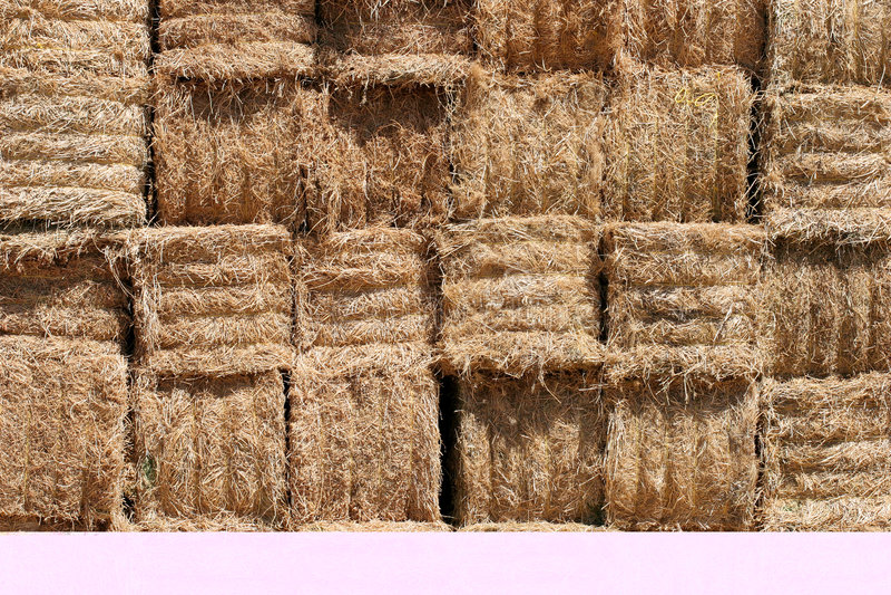 Download 背景打包干草 库存照片. 图片 包括有 特写镜头, 附加, browne, 季节性, 模式, 干草, 干燥, 收获 - 179338