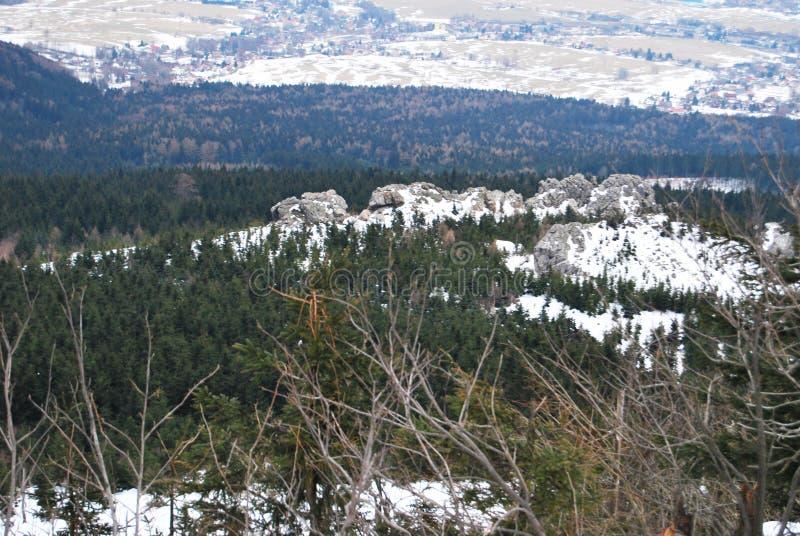 背景捷克最高的横向山snezka冬天 库存照片