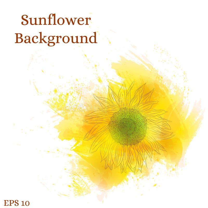 背景接近的向日葵 水彩黄色花 库存例证