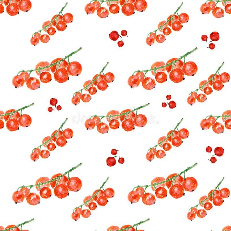背景无核小葡萄干红色白色 手工制造的水彩 无缝五颜六色的模式 向量例证