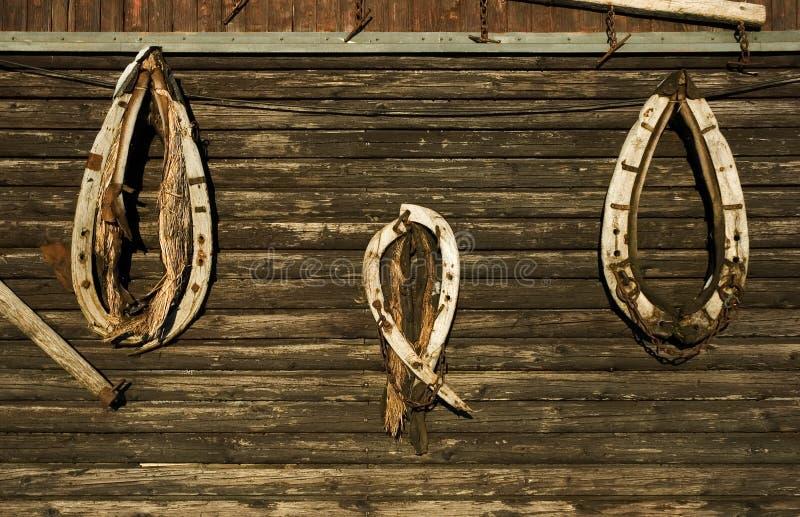 背景木衣领的马 免版税库存图片