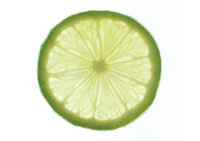 背景柠檬 免版税库存照片