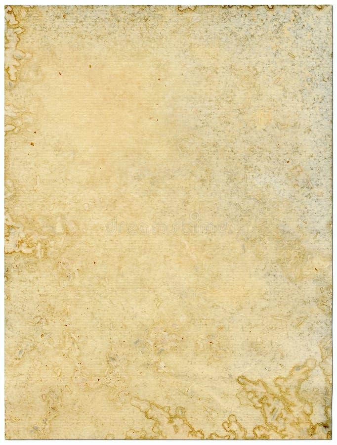 背景查出的发霉的老纸白色 免版税库存照片