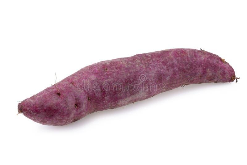 背景查出的土豆甜白色 免版税库存照片