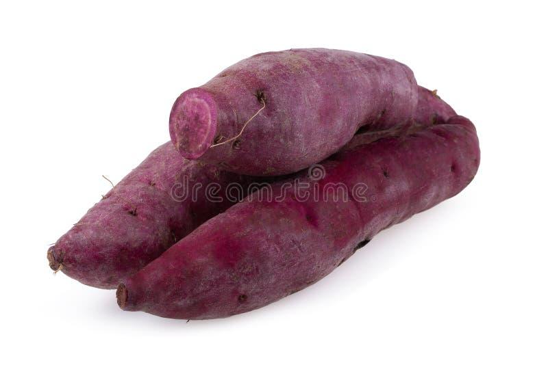 背景查出的土豆甜白色 免版税库存图片