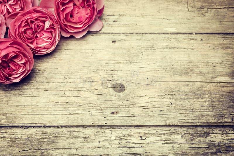 背景桃红色玫瑰葡萄酒 免版税库存照片
