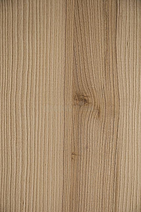 背景棕色树荫纹理木头 在右边,在结板  免版税库存照片