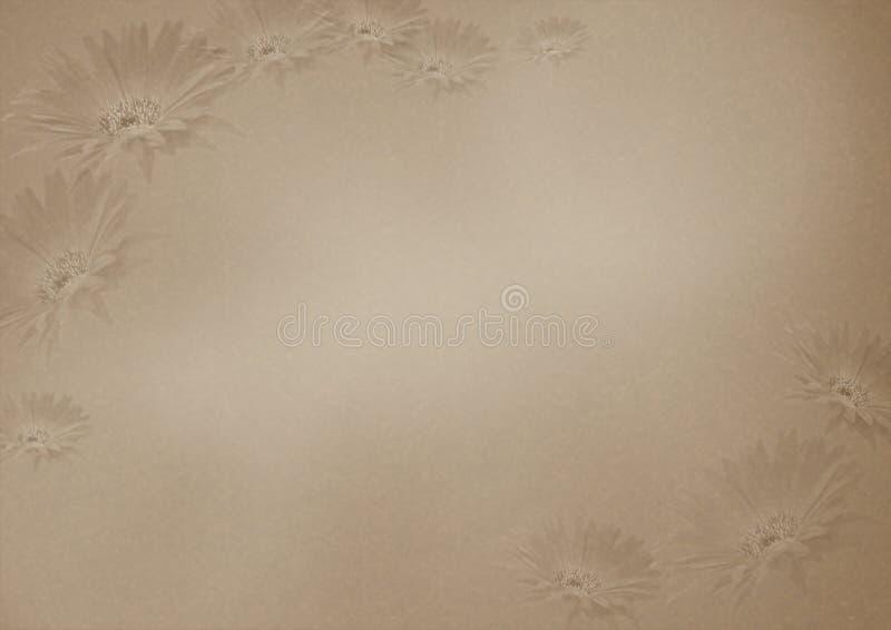 背景棕色花纹理 免版税库存照片