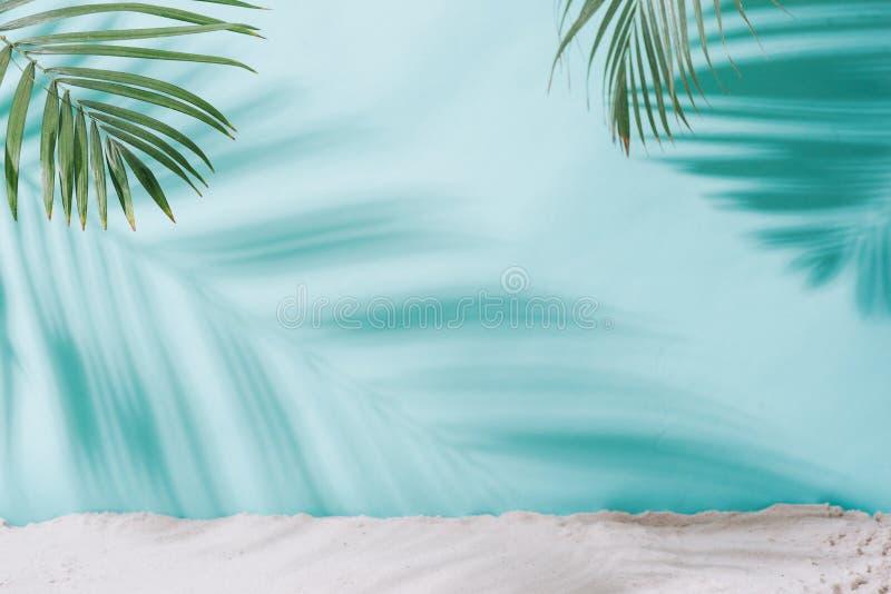 背景概念框架沙子贝壳夏天 在蓝色背景的棕榈树阴影 免版税库存图片