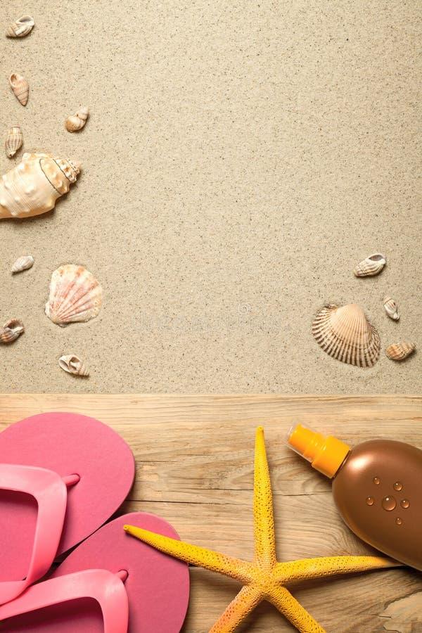 背景概念框架沙子贝壳夏天 图库摄影