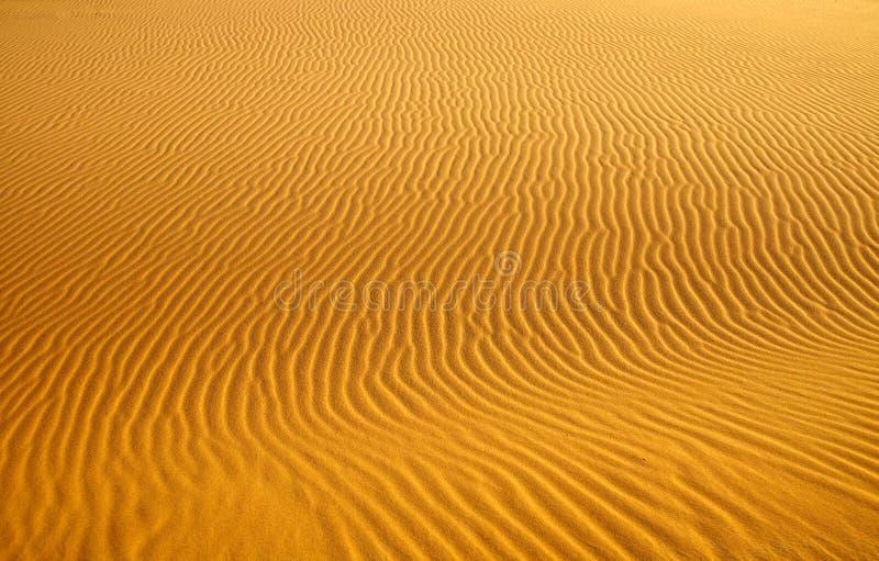 背景沙丘沙子 免版税库存照片
