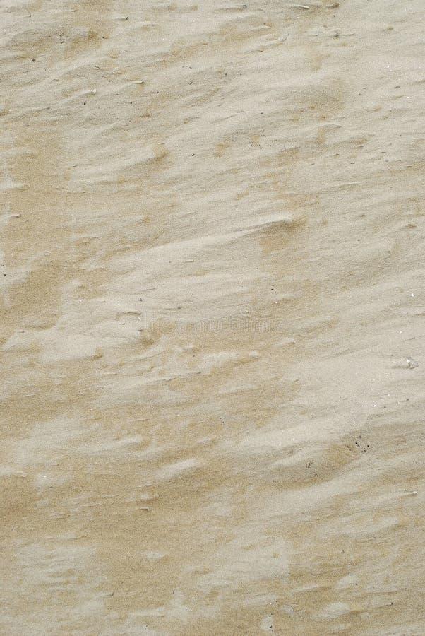 背景沙子纹理 免版税图库摄影