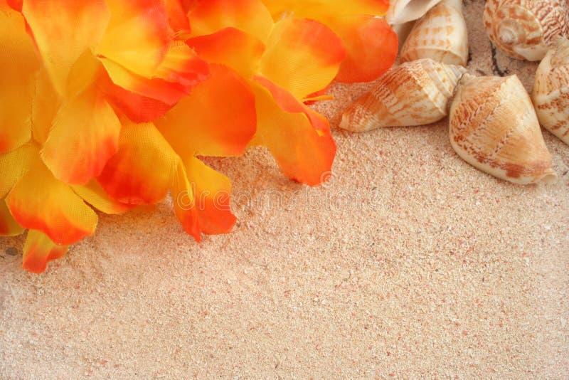 背景海滩夏威夷人 库存图片