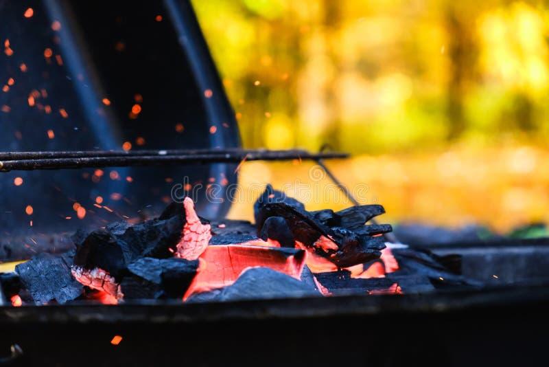 背景煤炭热火的火焰,烟木 图库摄影