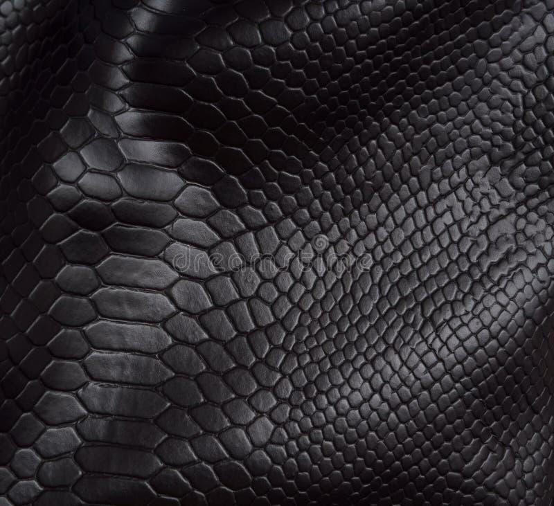 背景爬行动物皮肤 库存照片