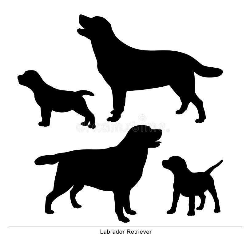 背景狗灰色拉布拉多小狗后方猎犬查阅 狗是大和小的 向量例证