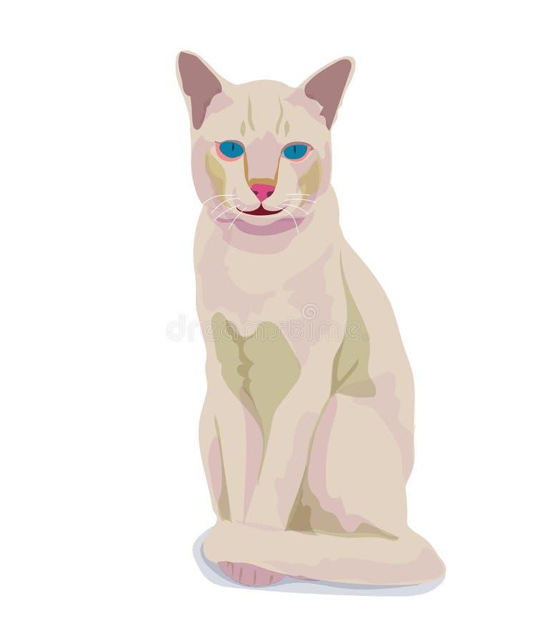 背景猫查出的白色 库存例证
