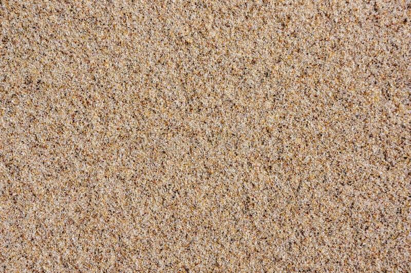 背景理想的沙子纹理 在波儿地克的海滩的沙子 免版税库存图片
