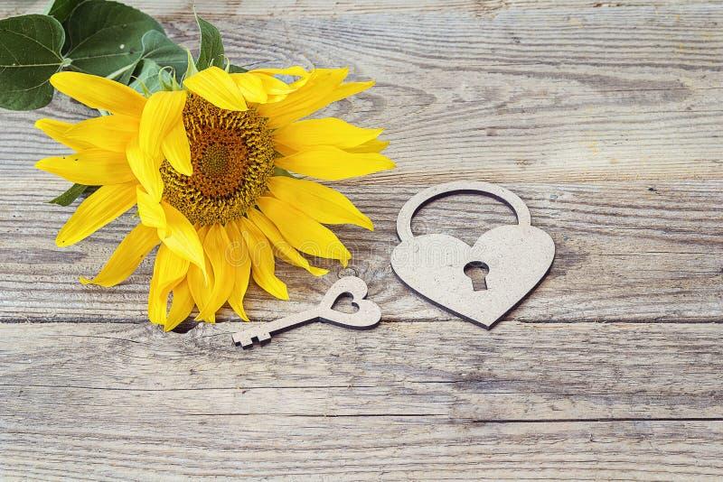背景用向日葵、锁心脏和钥匙在老木bo 库存图片